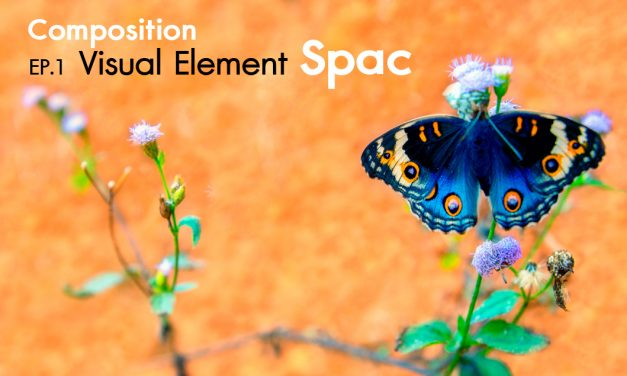 Composition ep.1.4 Visual Element (Space)