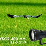 Review AF-S Nikkor 400 mm. f2.8 G ED VR