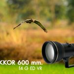Review AF-S Nikkor 600 mm. f4 G ED VR