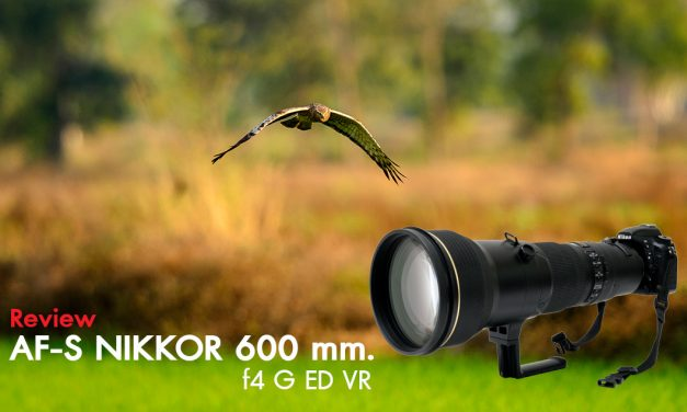 Review AF-S Nikkor 600 mm. f4 G ED VR