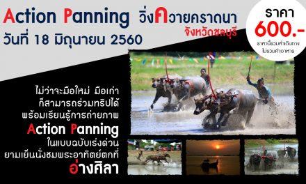Trip Action Panning (วิ่งควายคราดนา ที่ชลบุรี)
