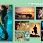 Chon Buri Photo Contest
