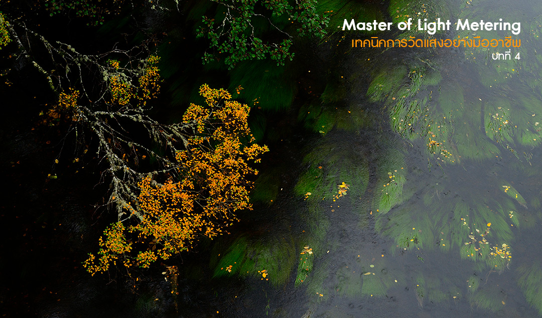 Master of Light Metering_Chapter 4