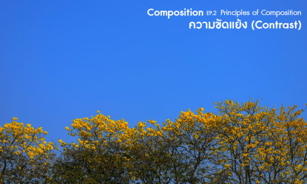 Composition ep.2.6 Principles of Composition (ความขัดแย้ง-Contrast)