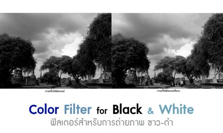 Color Filter for Black&White