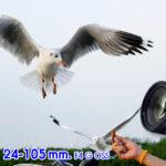 Review Sony FE 24-105 mm. F4 G OSS