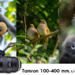 Tamron 100-400 mm. f/4.5-6.3 Di VC USD