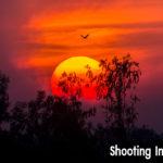 Shooting Into the Sun