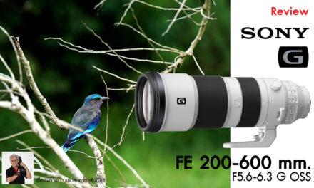Review Sony FE 200-600 mm. F5.6-6.3 G OSS