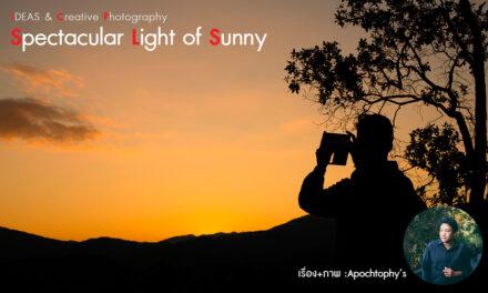 IDEAS & Creative Photography_Spectacular Light of Sunny