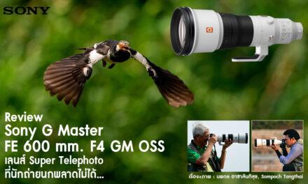 Review Sony G Master FE 600 mm. F4 GM OSS เลนส์ Super Telephoto ที่นักถ่ายภาพนกพลาดไม่ได้