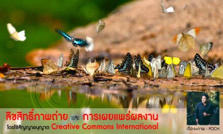 ลิขสิทธิ์ภาพถ่ายและการเผยแพร่ผลงาน โดยใช้สัญญาอนุญาต Creative Commons International