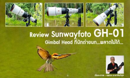 Review Sunwayfoto GH-01 Gimbal Head ที่นักถ่ายนก…พลาดไม่ได้…
