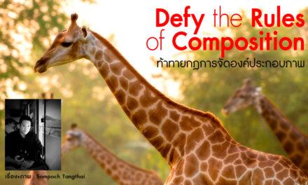 Defy the rules of Composition ท้าทายกฎการจัดองค์ประกอบภาพ