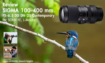 Review SIGMA 100-400mm F5-6.3 DG DN OS Contemporary for SONY FE , L-Mount