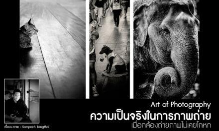Art of Photography_ความเป็นจริงในการภาพถ่าย เมื่อกล้องถ่ายภาพไม่เคยโกหก