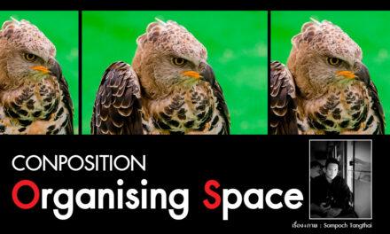 CONPOSITION ORGANISING SPACE