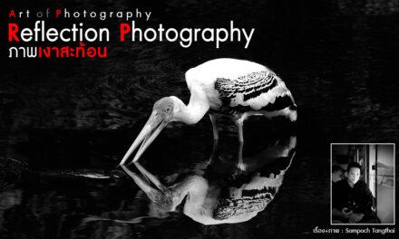 Art of Photography_Reflection Photography (ภาพเงาสะท้อน)