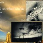 Art of Photography_ Rain มองหาศิลปะในหน้าฝน